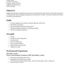 Example Resume Customer Service by Extraordinary Customer Service Sample Resume 14 Representative