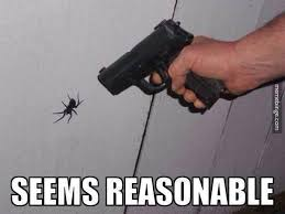 Huge Spider Memes Image Memes - 31 struggles that all arachnophobes know to be true spider guns