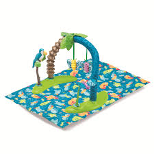 evenflo exersaucer triple fun life in the amazon by oj commerce
