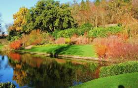 dyrham park and gardens near bath and places to stay great