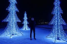 lafarge winter lights display u2013 fantasy forest u2013 coquitlam bc