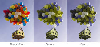 Blue Green Color Blindness We Are Colorblind A Quick Introduction To Colorblindness