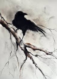 charcoal drawing crow wonder where who the source is