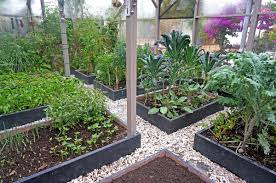 intensive gardening layout everything you need to know about french intensive gardening