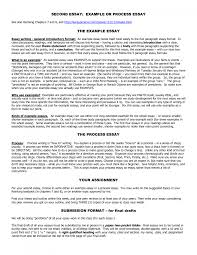 sample essay writing pdf cover letter process essay examples informational process essay cover letter cover letter template for examples of process essay examplesprocess essay examples large size