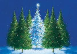 12 best trees images on pinterest charity christmas cards xmas
