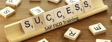 Sap Fico Sample Resumes by Sample Resume Sap Pp Consultant