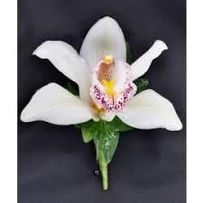 Orchid Boutonniere Prom Flowers Norman Florist Flower Shop In Flanders U0026 Livingston