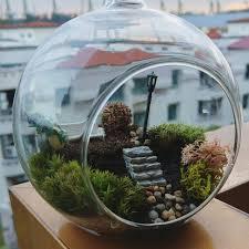 romantic garden ft totoro glass ball terrarium gardening on