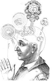 consciousness wikipedia