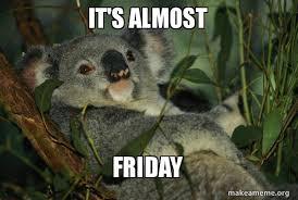 Almost Friday Meme - it s almost friday laid back koala make a meme