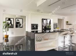 Villa Interiors Black White Villa Interior Open Kitchen Stock Photo 583363483