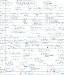 College Anatomy And Physiology Notes Anatomy Of An A A Look Inside The Process Of One Of The World U0027s