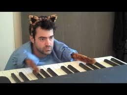 simple cat playing piano meme keyboard cat 80 skiparty wallpaper