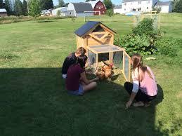Backyard Chicken Run by The Ultimate Backyard Chicken Coop With Run By Infinite Cedar