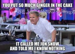 Chef Ramsy Meme - 10 things you probably didn t know about gordon ramsay aunty acid