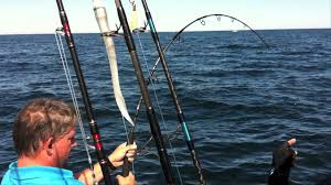 bluefin tuna fishing cape cod 2011 get reel fishing youtube