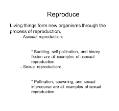Asexual Reproduction Worksheets Living Things Reproduce Examples Image Gallery Hcpr
