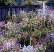 English Cottage Gardens Photos - english cottage gardens uc master gardener program of sonoma county