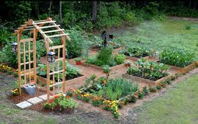 Companion Garden Layout Square Foot Gardening Vegetables Just Got A Whole Lot Easier