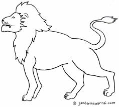 gambar sketsa gambar hewan gambarpedia kelinci mudah digambar di