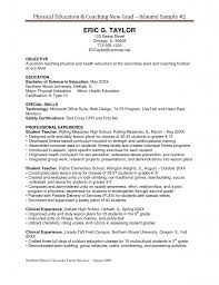 skill resume professional coach resume sample certified resume