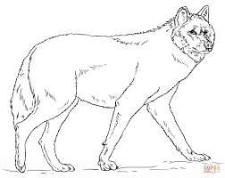 simple decoration coloring pages of wolves wolf free tigersit