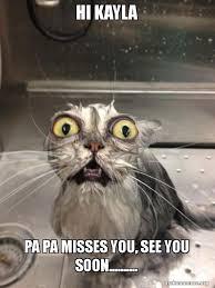Soon Cat Meme - hi kayla pa pa misses you see you soon cat bath make