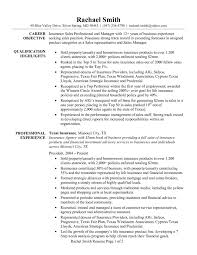 Event Coordinator Job Description Resume by Insurance Sales Professional And Manager Resume Sample Vinodomia