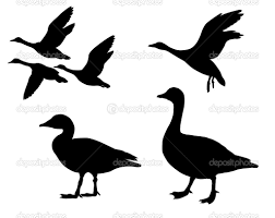 vector silhouette geese on free printables pinterest free