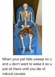 Skeleton Computer Meme - 25 best memes about old computer old computer memes