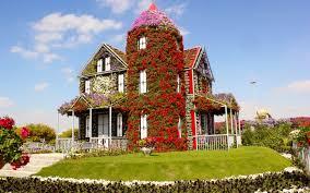 wallpapers dubai emirates uae miracle garden lawn cities 2880x1800