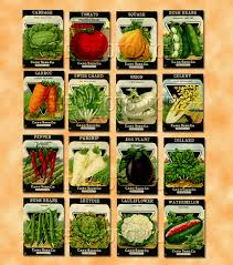 seed packets 16 vegetable seed packets lovely vintage colorful images