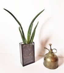 vertical rectangle terrarium vase window box u2014 copper u0026 torch