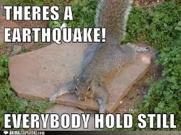 Melbourne Earthquake Meme - funny for earthquake funny pictures www funnyton com