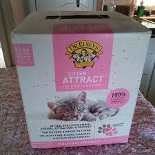 black friday litter boxes amazon bad cat chris the baddest cat you u0027ll ever love