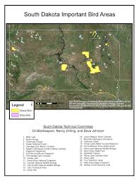 Map Of Custer State Park by Prairie Hills Audubon Society