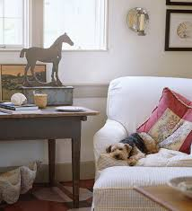 pet room ideas decorating ideas making a pet friendly home traditional home