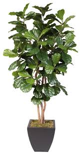 artificial fiddle leaf tree in metal pot contemporary