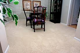 best carpets to hide footprints and stains in high traffic areas
