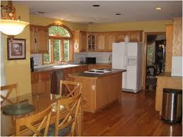 kitchen white appliance kitchen luxury cool kitchen paint colors