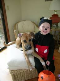 Mickey Mouse Costume Halloween Mickey Mouse Costume Photos U0026 Tips Mickey Mouse Costume Zimbio