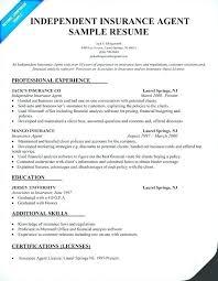 insurance resume exles insurance resume sles samuelbackman