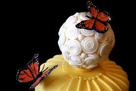 butterfly cake denna s ideas