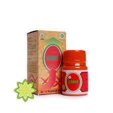 Obat Cacing Tipes obat tipes vermint kapsul cacing 12 kapsul vermindo herbal sunnah