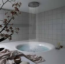 Creative Ideas For Decorating A Bathroom 16 Photos Of The Creative Design Ideas For Rain Showers Bathrooms