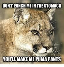 Puma Pants Meme - don t punch me in the stomach youllmake me puma pants meme on me me