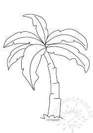 tropical beach coloring pages tropical palm tree template coloring page