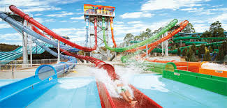 theme park deals gold coast plan your day at wet n wild gold coast