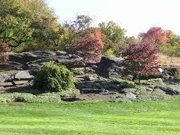 Botanic Garden Bronx by Rock Garden Picture Of New York Botanical Garden Bronx